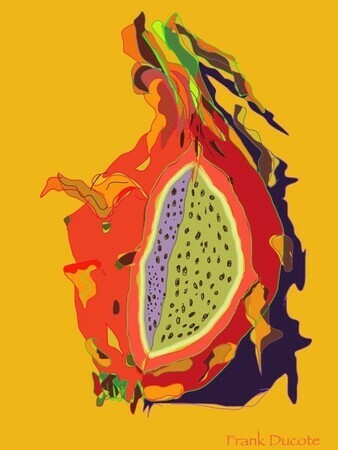 DUCOTE; Dragon Fruit ; digital painting SOLD additional prints available
