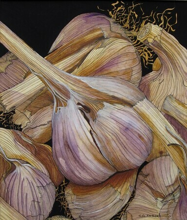 Garlic II  SOLD