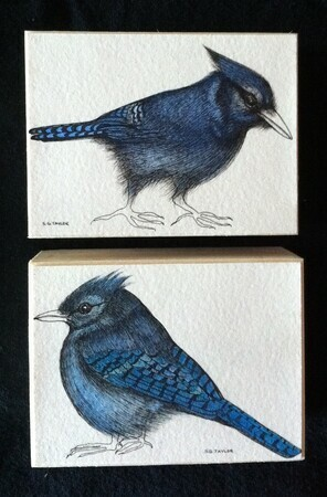 "TAYLOR; Jay I and Jay II; ink drawings on paper, stained, mounted on wooden cradles, finished with resin; 3""x4"" Jay I SOLD; JAY II SOLD"