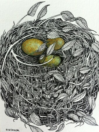 "TAYLOR; Small Nest #11; ink drawing on paper, mounted on cradle, finished with resin, 4""x3"" SOLD at Sooke Fine Arts Show opening July 24, 2015"
