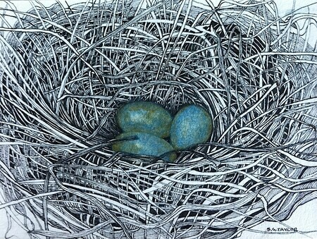 "TAYLOR; ; Small Nest #20; She Built Her Nest in a Newsworthy Place; ink drawing on paper mounted on wooden cradle, finished with resin; 3""x4"" SOLD"