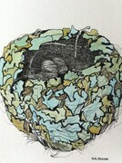 "TAYLOR; Small Nest #2; A Hummingbird's Art; ink drawing on paper with w/c, mounted on wooden cradle, finished with resin; 4""x3""SOLD"
