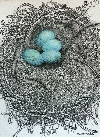 "TAYLOR; Small Nest #6: It Took a Month But They Co-operated and Got It Done; ink drawing on paper with w/c, 4""x3"" SOLD"