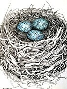 "TAYLOR; Small Nest #7:It Was her First Nest; ink drawing on paper, mounted on cradle, finished with resin, 4""x3"" SOLD"