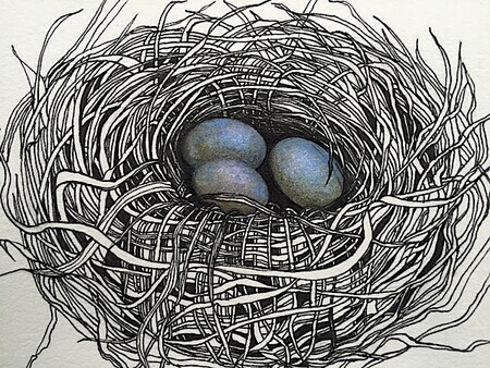 "TAYLOR; ; Small Nest: Her Eggs Were Alabaster Blue; ink drawing on paper mounted on wooden cradle, finished with resin; 3' x 4"" SOLD"