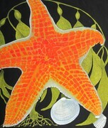 TAYLOR; Tidepool with Leather Star SOLD